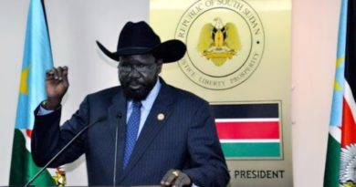 President Kiir's Message To South Sudanese In Egypt